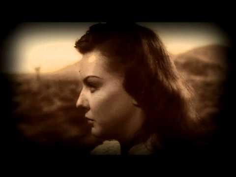 Cedar 55671 (a film noir) by Days i Knew