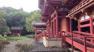 preview picture of video 'Hawaii Sightseeing with Adventure Tours Hawaii at the Byodo-In Temple'