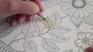 Secret Garden Colouring Book How I Colour A Leaf To