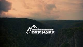 Der herbstliche Harz im Video