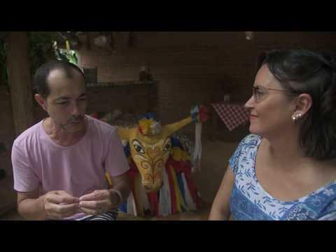 """Conheça o Boi de Siriri e o projeto que traz crianças para o carnaval - <font color=""""red""""> assista vídeo</font>"""