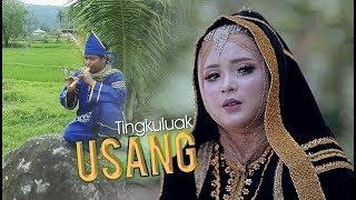 Download lagu Ayu Dewi Tingkuluak Usang Mp3