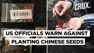 Farmers Across US And UK Receive Mysterious Packets Of Chinese Seeds