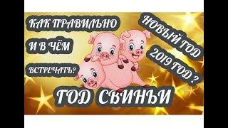Как и в чём правильно встречать Новый год 2019? Новый год Жёлтой Свиньи по восточному календарю