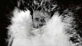 TORREBLANCA   DEFENSA (Video Oficial)