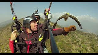 Amazing! Flying with an Egyptian Vulture | Deadly 60 | Series 3 | BBC
