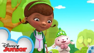 Doc Saves St. Patricks Day! 🍀 | Doc McStuffins | Disney Junior