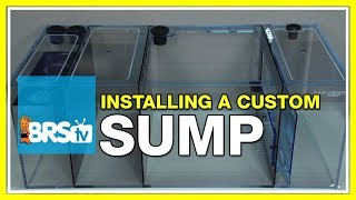 Week 3:  Sumps - What do they do, and which should you select? | 52 Weeks of Reefing #BRS160