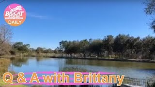 Q&A With Brittany~Birthday Treats W/ Thurston & Lovey And MaryAnn!  1.21.2019