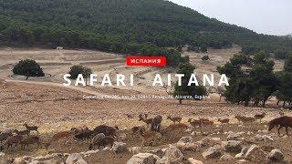 В мире животных парка Сафари-Айтана, провинция Аликанте, Испания. Safari-Aitana