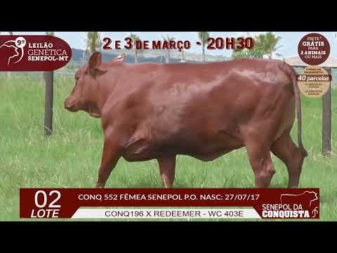 CONQ 552