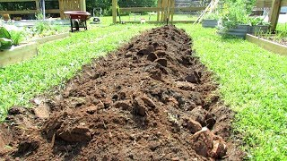 How to Dig Your First Earth Bed Vegetable Garden & A Cherry Tomato Hedge: All the Steps in Detail!