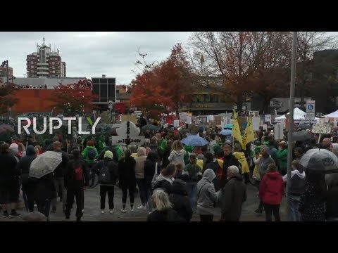 LIVE: Animal rights activists march against 'Death Lab' LPT