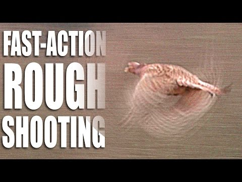 Fast-action rough shooting