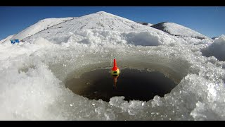 Ice Fishing Scofield Utah