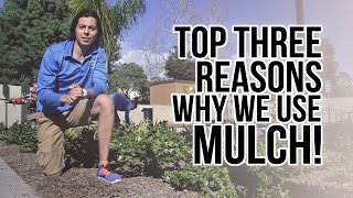 preview picture of video 'Top THREE Reasons we use MULCH! Landscaping in Santa Barbara, CA'