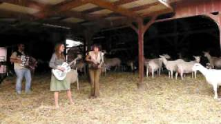 "The Ditty Bops @ Redwood Hills Goat Farm: ""In The Meantime"""