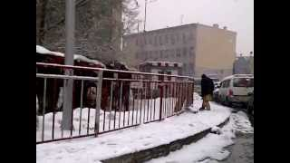preview picture of video 'Beauty of Snowfall in Kabul 2012'