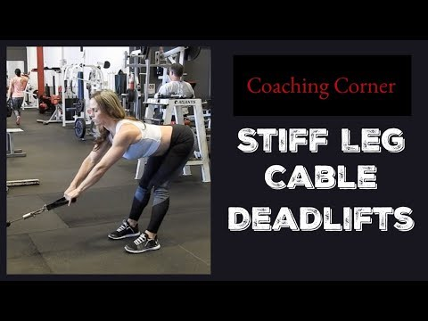 Cable Straight-back Straight-leg Deadlift