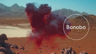 """Video thumbnail of """"Bonobo : Samurai"""""""