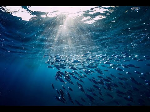Oceanography 1 (Origin of Earth and the Oceans)