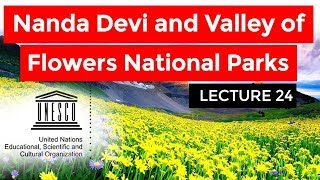 UNESCO World Heritage Site, Nanda Devi And Valley Of Flowers National Parks #24 #BIODIVERSITY