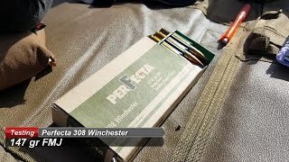Perfecta 308 Win ammo test: 400 yard validation