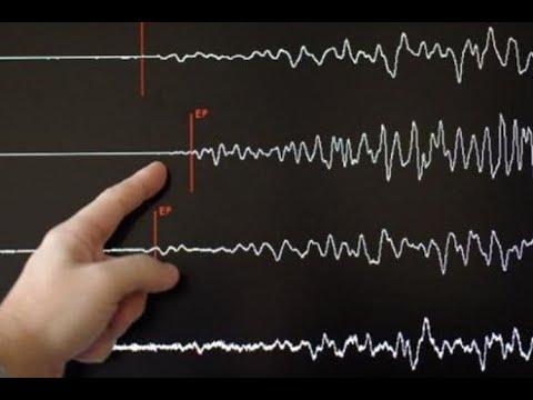 Gempa 7,7 di Laut Banda Terasa Hingga di Kota Sorong, Warga Panik