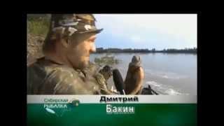 Сибирская рыбалка с константином фадеевым