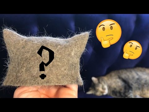 DIY Cat Hair Cat Hat for Cats, Witch Crafting #5