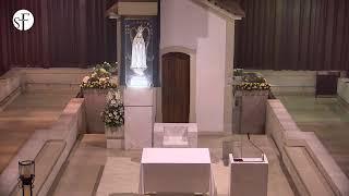 Romería al santuario de Fátima