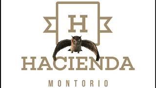 Video del alojamiento Casa Rural Hacienda Montorio