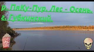Попов верх губкинский район рыбалка
