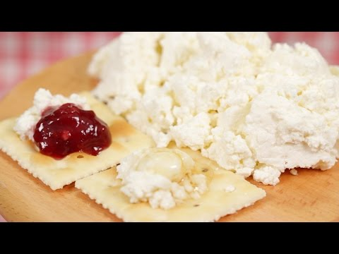 Homemade Fresh Cheese Recipe | Cooking with Dog
