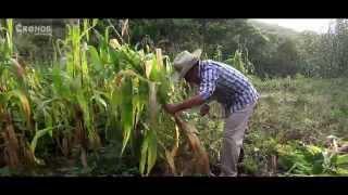 VELOZ DE LA SIERRA - LA VIDA EN EL CAMPO VIDEO OFICIAL