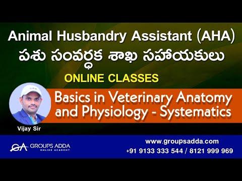 Basics in Veterinary Anatomy and Physiology ll పశు సంవర్ధక శాఖ సహాయకులు llAnimal Husbandry Assistant