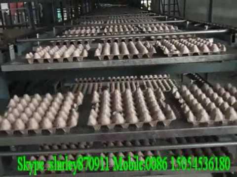 Bandeja de huevo de papel que hace la maquinaria hecha en China