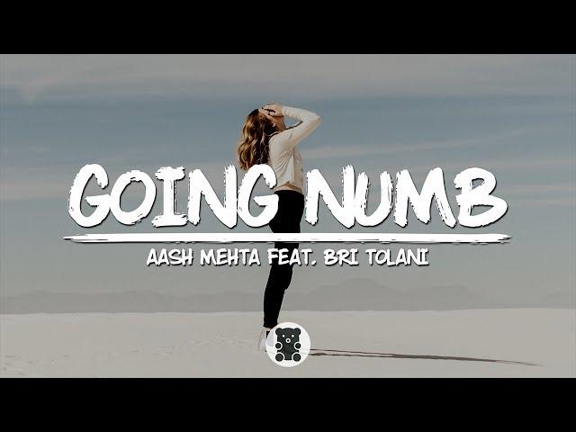 Aash Mehta - Going Numb (feat. Bri Tolani) (Lyrics Video)