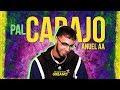 Pal Carajo - Anuel AA | 2019