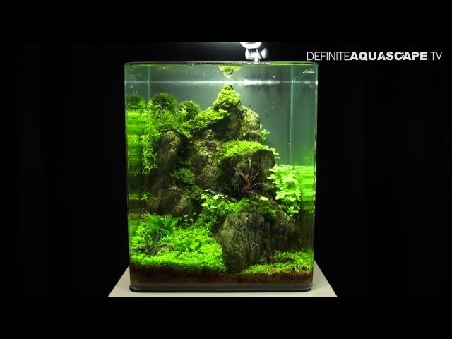 Aquascaping - The Art of the Planted Aquarium 2013 Nano compilation