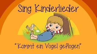 Kindergarten Musikangebot Musik Kinder Singen