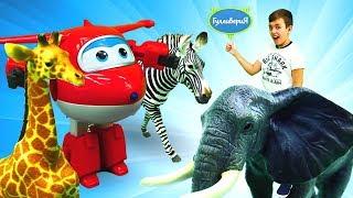Супер Крылья Джетт и его друзья — Зоопарк — Видео для детей