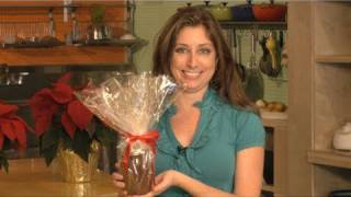 How to Make Homemade Nutella For the Holidays