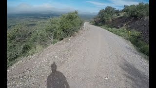 Testing out the Atom All Terrain Longboard on a mountain