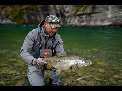 BIG BROWNS on small Flies - Fly fishing New Zealand.