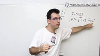 Analytická geometrie 13 - Vektory - jednotkový vektor