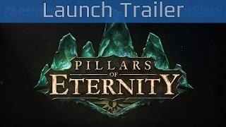 VideoImage1 Pillars of Eternity Champion Edition