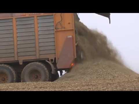150 hectare mais in een silo  150 Hektar Mais in ein Silo - Reportage - ensilage 2012 Trekkerweb.nl