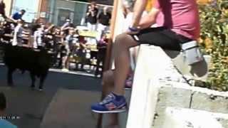 preview picture of video 'FIESTAS Meco 2014-Encierro Mañana 13 09 2014 10'