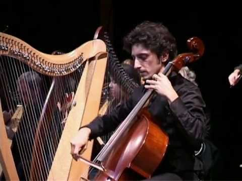 Celtic Harp Orchestra - Ghost in the shell
